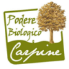 logobottom