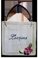 mattonelle_carpine